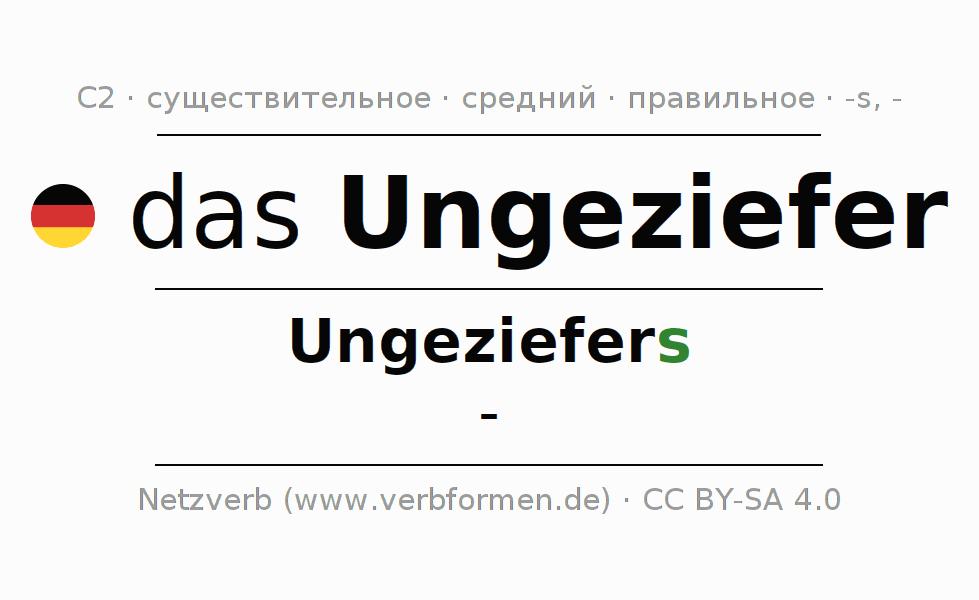 féreg auf deutsch